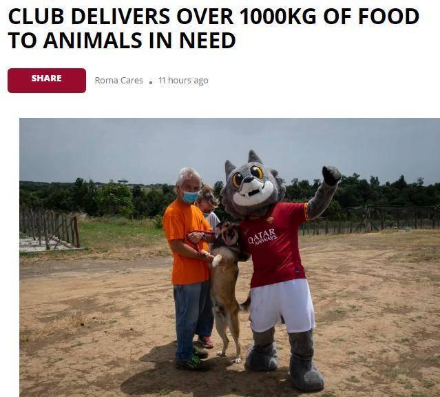 这是撒真狗粮!罗马队给流浪猫狗捐赠1吨