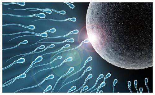 39岁二胎妈妈试管怀三胞胎,分别孕20周26周30周生出,医生:罕见