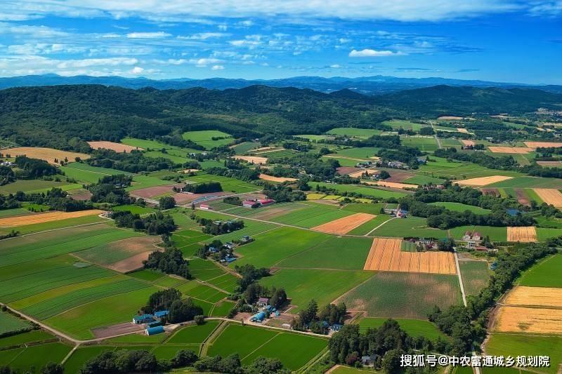 农村文化产业的发展促进农村振兴