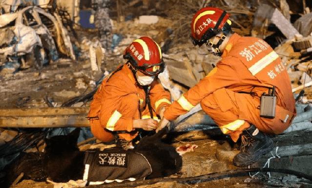 搜救犬参与槽罐车爆炸救援受伤 目前仍有5人失联
