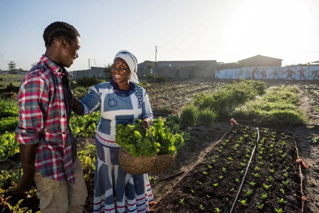 拜耳将向受新冠肺炎(COVID-19)疫情影响的200万小农户提供作物援助