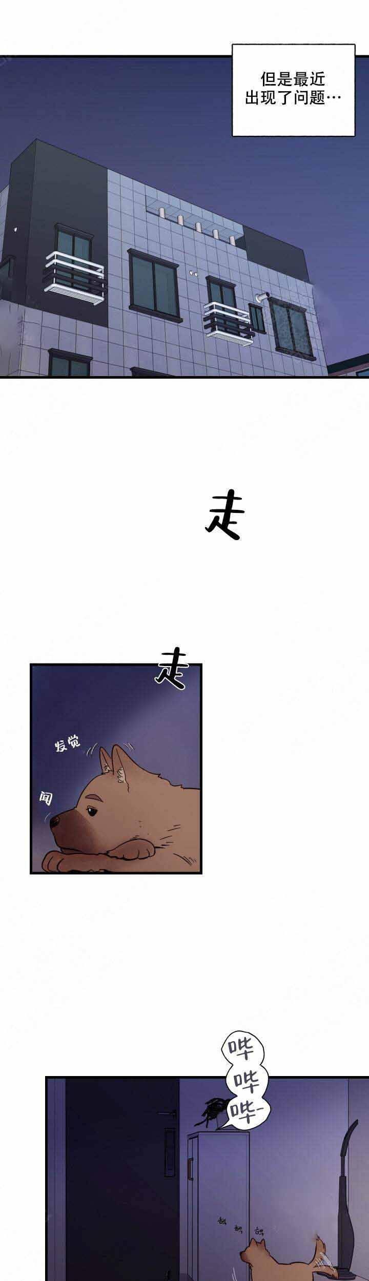 漫画《主人的主人》