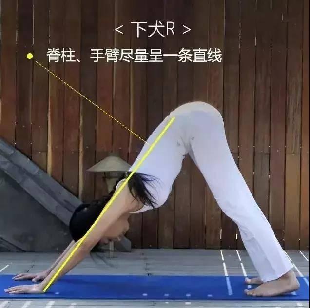 为什么练瑜伽那么久没效果?抓住要点,避免错误体式才能事半功倍_身体 知识百科 第3张