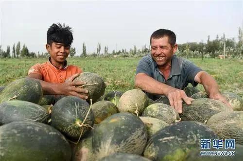 """你是不是在新疆香水季吃了这些""""标志性"""