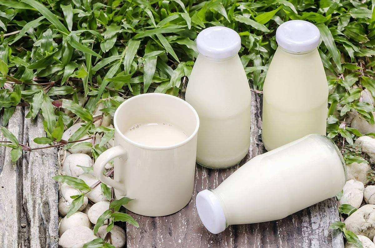 食话食说 糖尿病、高血压、高尿酸患者能不能喝牛奶?