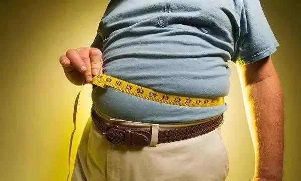 倩狐减肥瘦身:怎样减内脏脂肪?这个最有效方法,一定要知道!