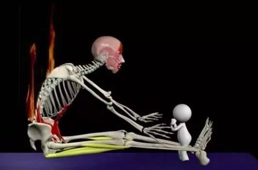练习瑜伽伤身?是因为动作做错了,正确体式才能塑形美颜_腰椎