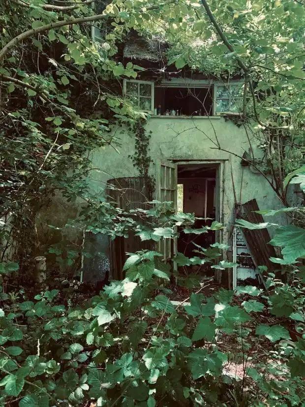 有人住的地方才是家:英国豪宅被闲置10年,如今长满草破败不堪_中欧新闻_欧洲中文网