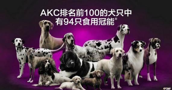 宠物食品企业之雀巢普瑞纳