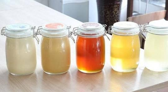 如何区分成熟的蜂蜜和未成熟的蜂蜜?如