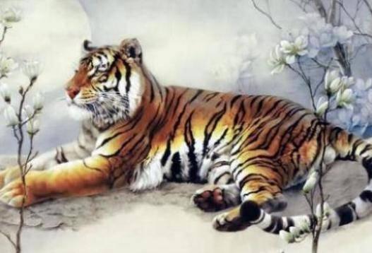 属虎之人五行属木 常见金属相识的物理