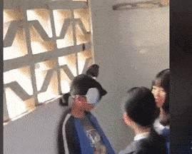 官方通报一学生被多名学生扇打,称因琐事产生矛盾