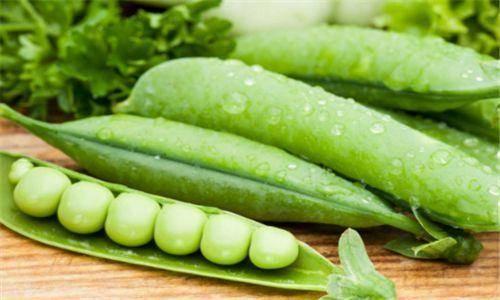 <strong>土豆有营养是抗衰老的食物 想和年长的</strong>