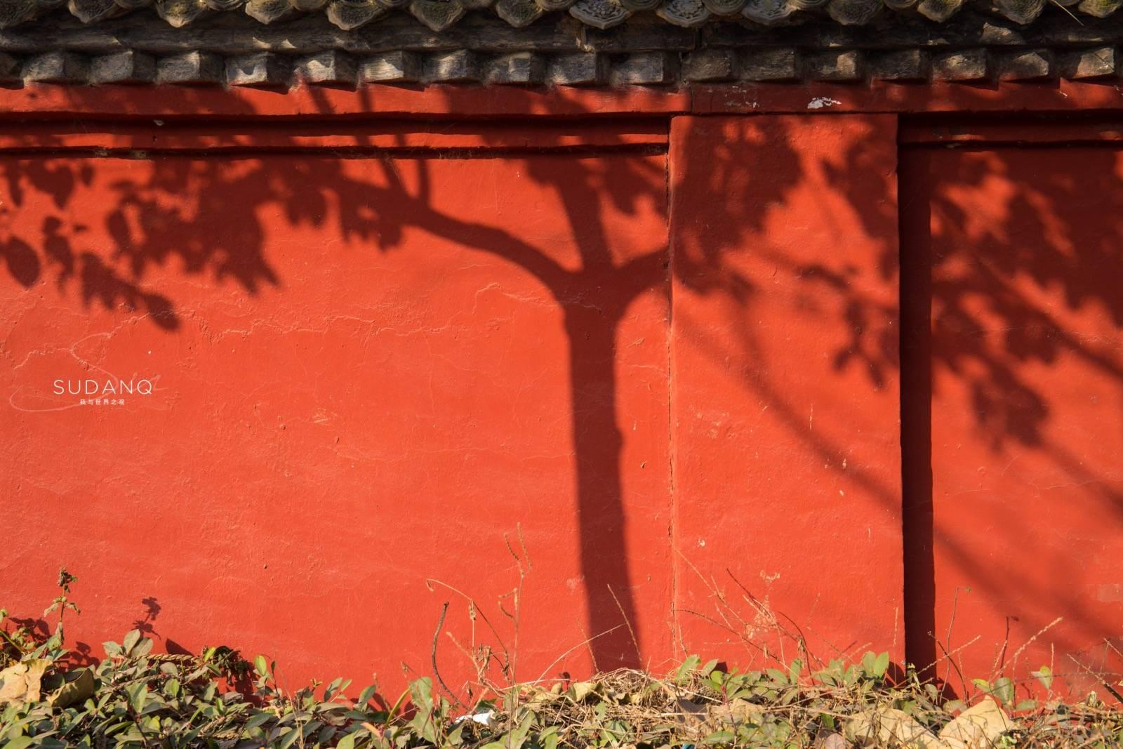 原创             西安一入秋,古老的河西走廊掀起风浪:一座鲜为人知的千年古寺