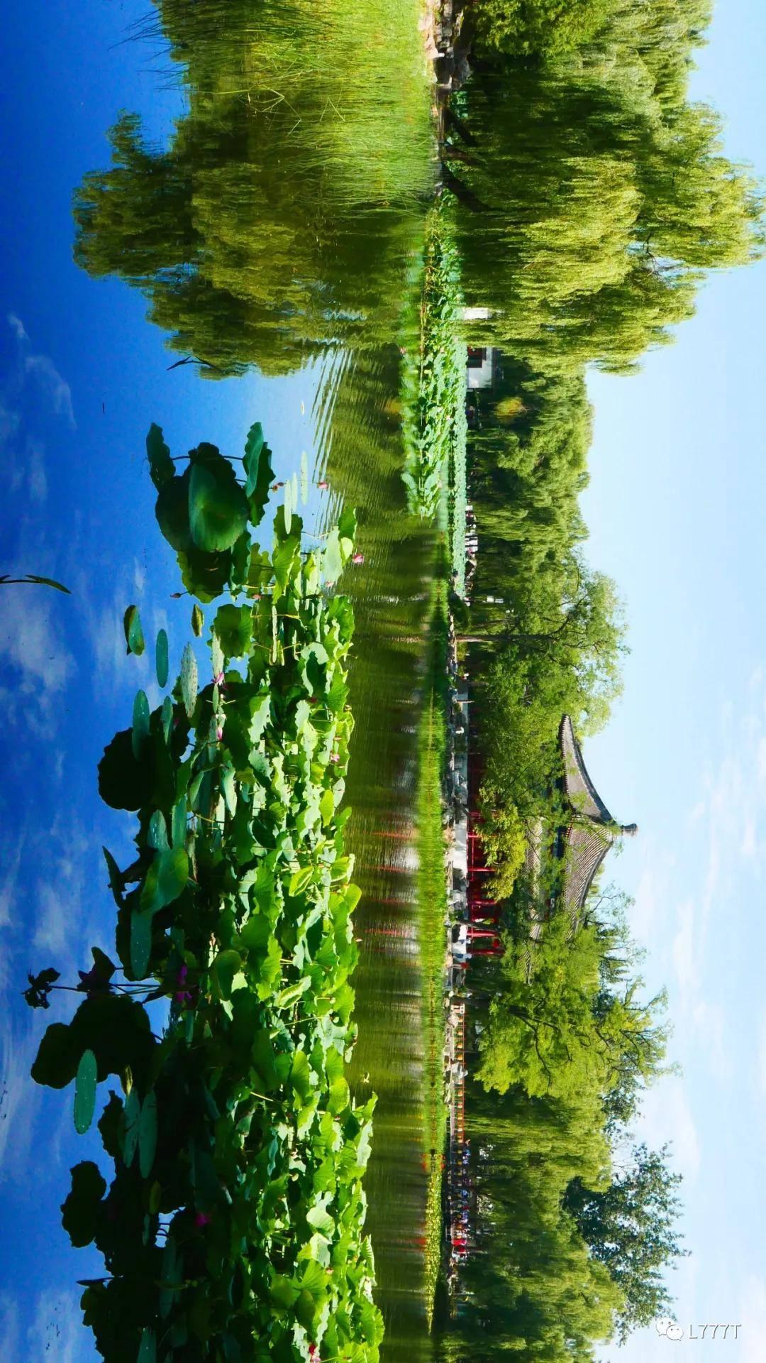 颐和园的美景