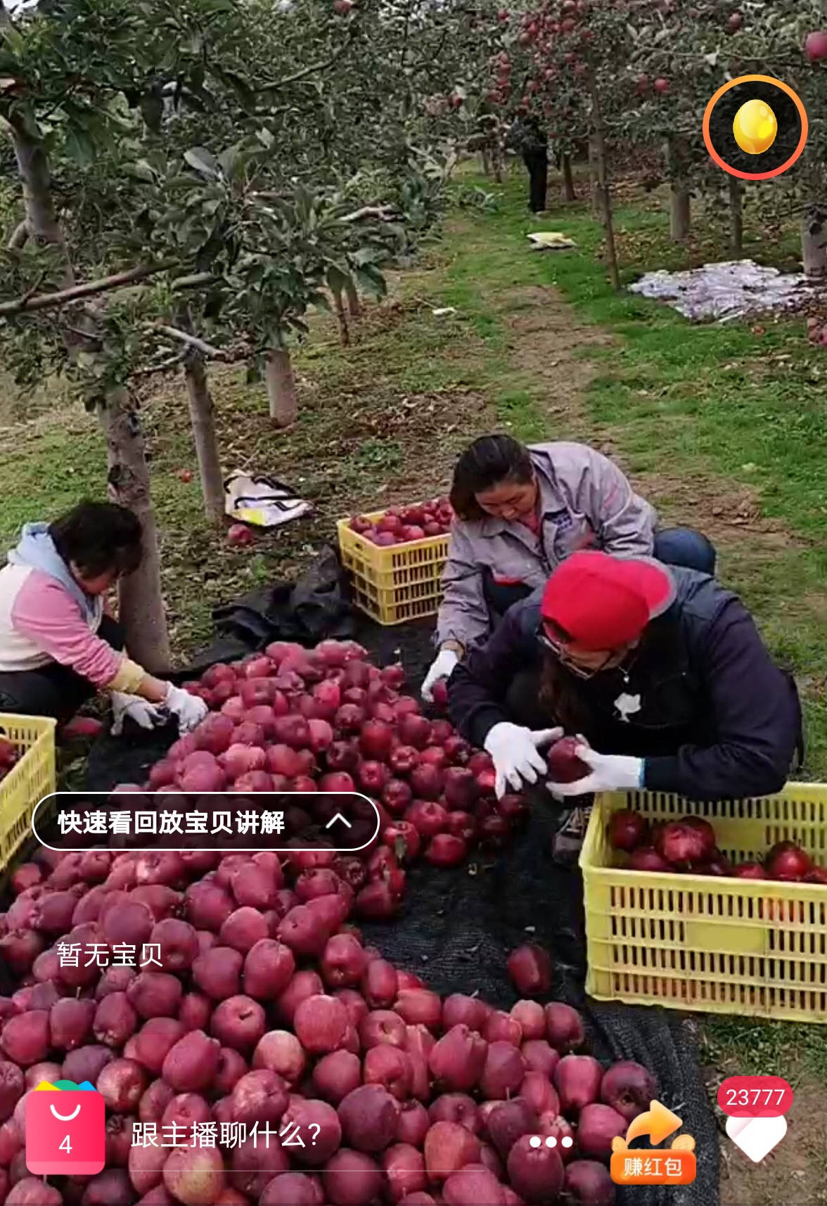 """国庆节也是""""丰收节"""",甘肃59岁大爷淘宝直播7天卖掉5000斤苹果"""