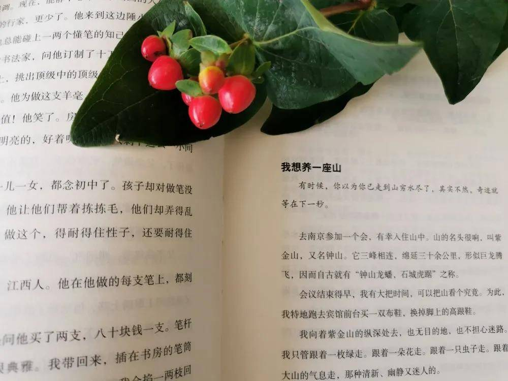 【青海在线网·散文】做一个活在花香里的女子