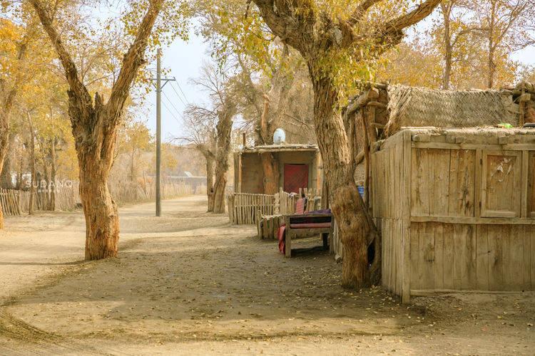 自古探险家闯入的塔克拉玛干,究竟藏着什么?神秘村落令人困惑