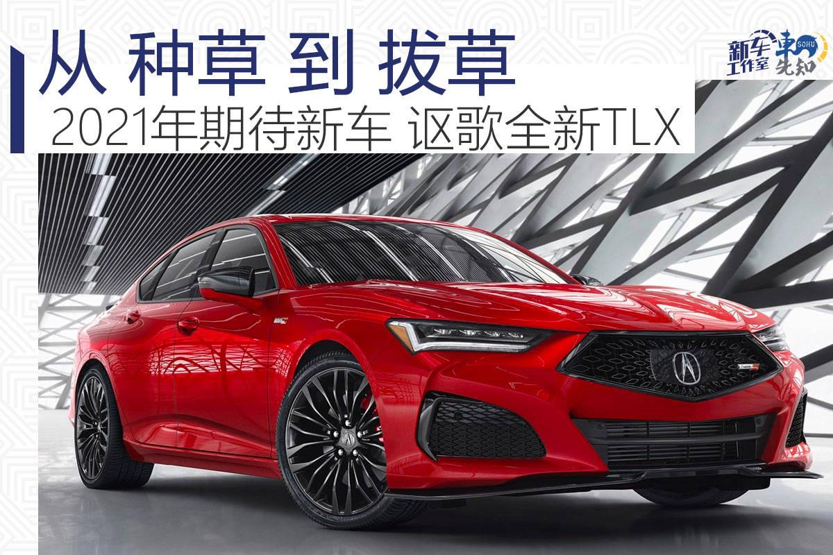 2021年编辑期待的原创新车——讴歌从种草到拔草的新TLX
