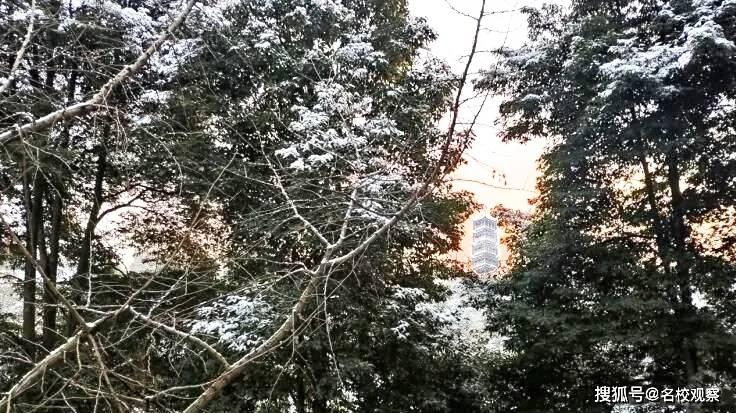 成都这盘雪到底有多大?惊艳全川!看看玉垒中学的雪景最美啦!