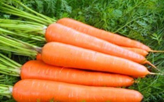 女性养生要会吃,常吃三种食物,排毒燃脂,营养又瘦身