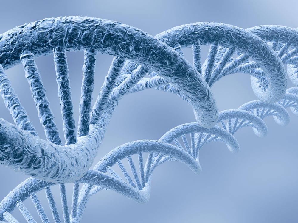 """为何有些人患癌风险高?这个基因突变可能是""""罪魁祸首""""-"""
