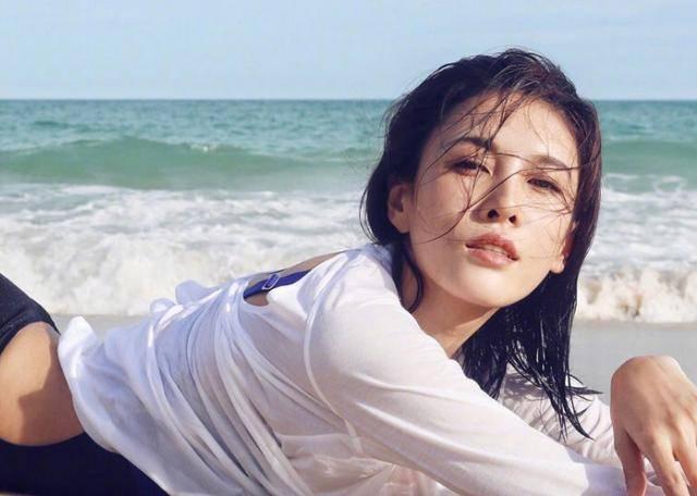 美女明星杨丽菁前后共主演了5部《皇野师姐》系列影戏插图(1)