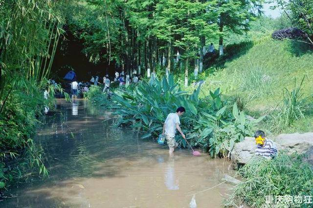 重庆清凉耍水好去处!捉螃蟹、捞鱼虾、挖沙……
