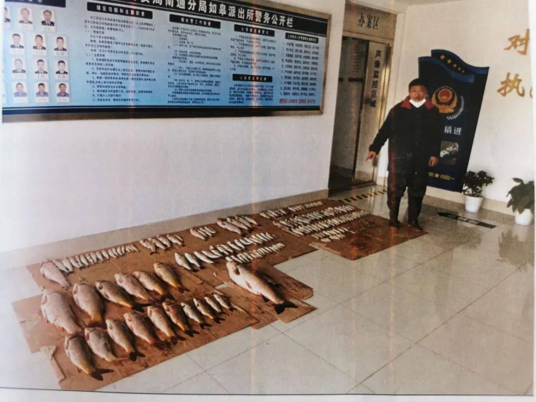 """江苏公开宣判两起长江""""电捕鱼""""非法捕捞水产品案,5人获刑"""