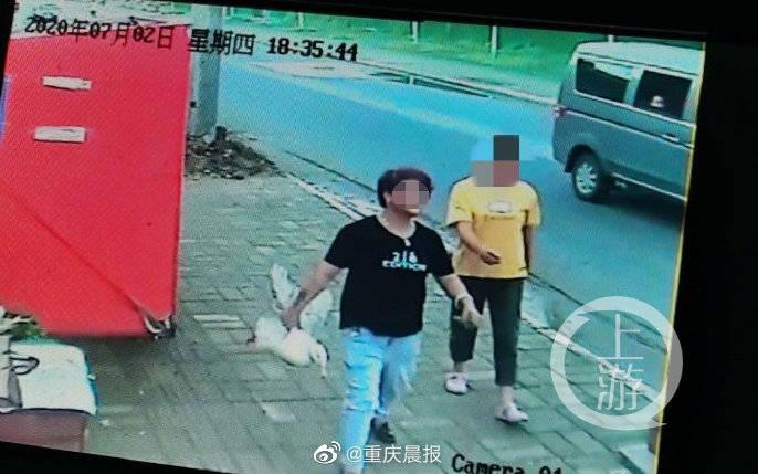 演员王珞丹发文称同事的宠物鸭被人抓走吃掉 警方介入调查