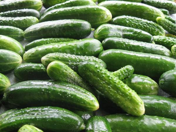 『身体』夏季炎热,这几种水果可以有效的控油养生,赶紧进来看看这些!