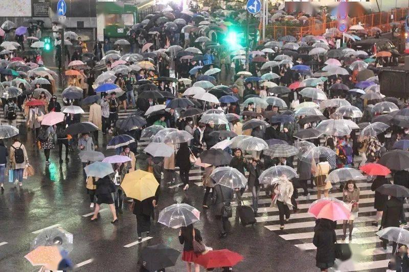 日本透明雨伞