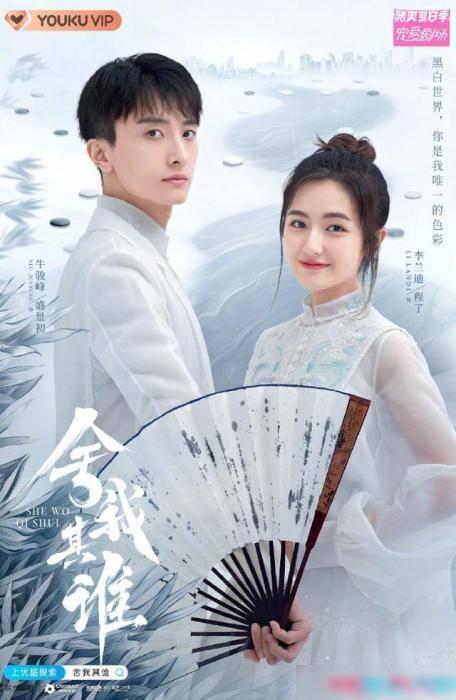 盛景 李兰迪、牛骏峰出演《舍我其谁》 片方谈选角过程