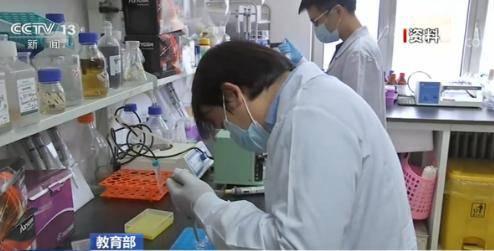 防疫|教育部:大力加强防疫人才培养 完善中医药学科体系