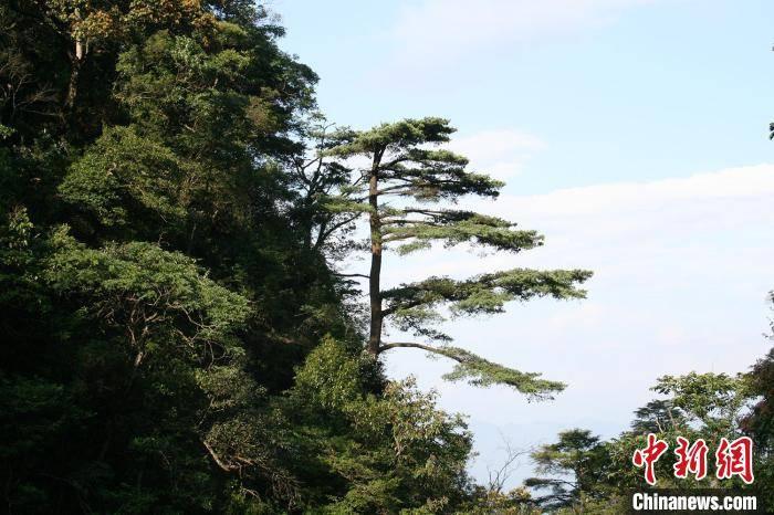 广东省全面铺开国家公园建设