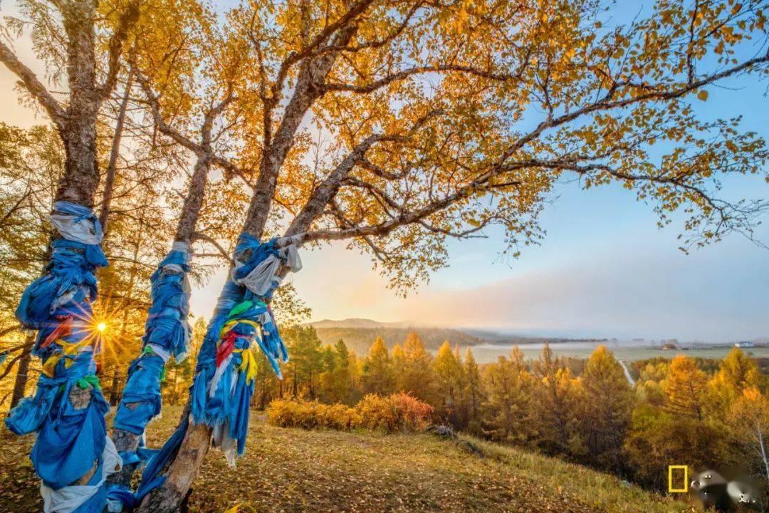 大興安嶺,裝滿了整個秋天