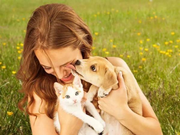 世界狂犬病日|对于这个危险的疾病