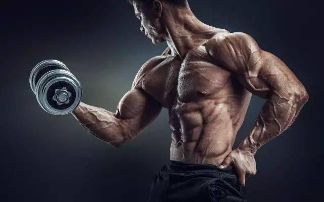 8个方法帮你越过肌肉生长平台期
