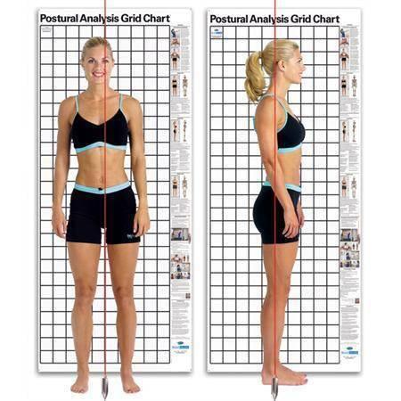为什么要做全身姿势体态评估以及自我如何评估?