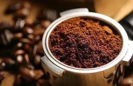 咖啡渣是属于什么类别的垃圾?英国人这么说... 防坑必看 第14张