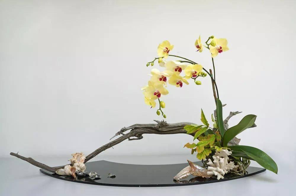 时尚市南 手把手教你玩转中式创意插花,感受花漾美好生活