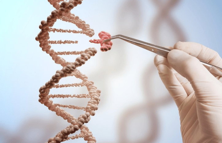 2020年诺贝尔化学奖授予两位女科学家!基因剪刀,改写生命密码的工具