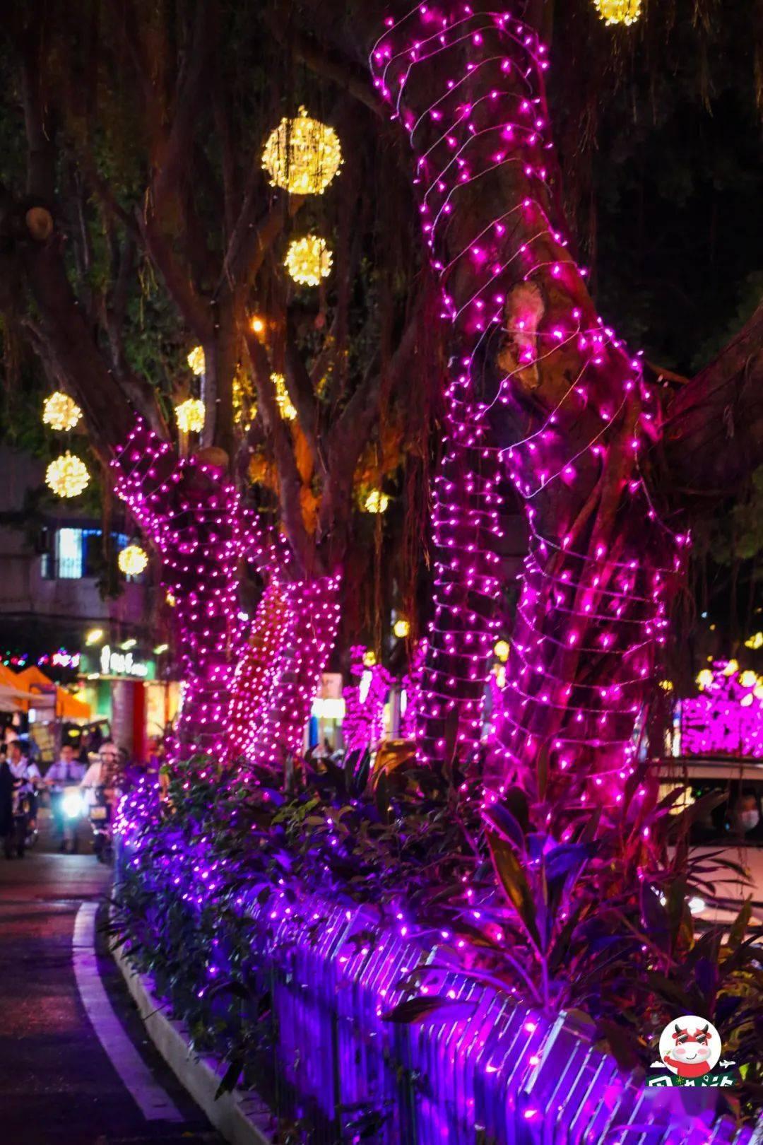 福州最美环湖夜市来啦!灯光秀、鲜花美食,一路逛吃逛吃!