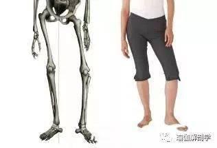 最伤腰的4件事情,你却每天在做!8个简单的瑜伽动作,保养你的腰椎!_脊柱