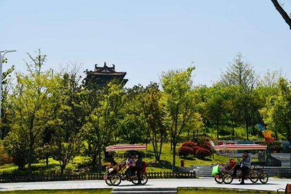 福利!重阳节陪老人免费游绿博园吧