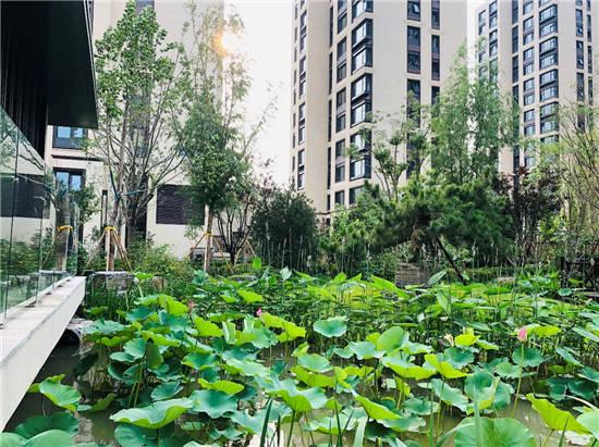 给你买房必买中铁华侨城·和园的三个理由