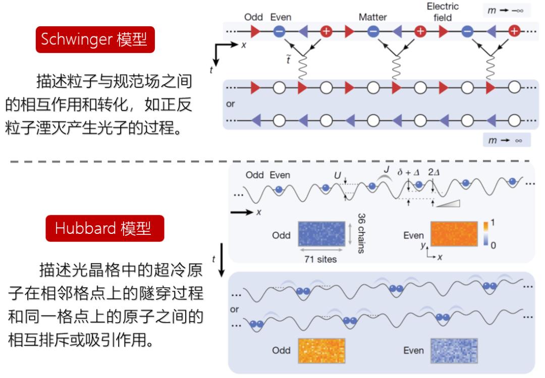 中国科大量子计算和量子模拟研究获重要突破:求解施温格方程