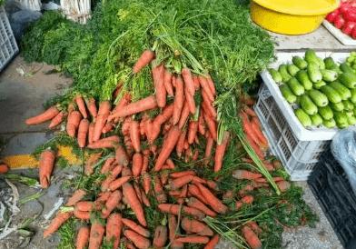 什么样的胡萝卜才是新鲜好吃的呢?