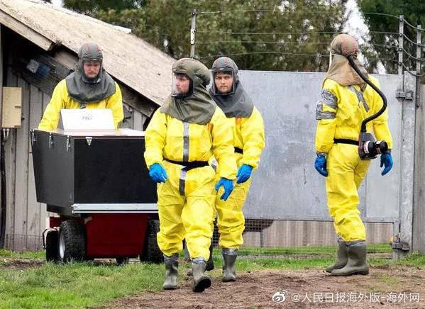 又折腾?丹麦水貂被埋后挤出地面 政府:挖出来烧掉
