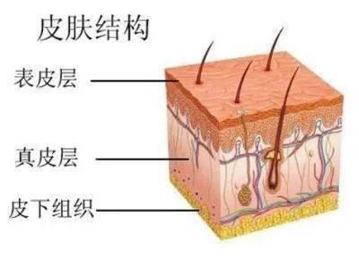 热门文章:[颈纹如何去除]嗨体祛颈纹